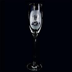 Champagneglas Lapplandsfjäll frost