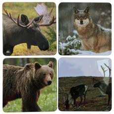 Glasuntersetzer wilde Tiere