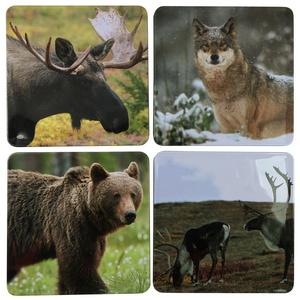 Glasunderlägg vilda djur