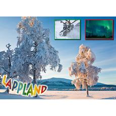 Postkarte 08 Winter Birke